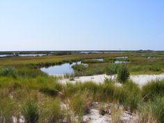 Tangier uppards marsh