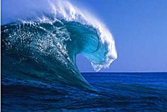 exquisitely endlessly unique in display & power ~ nature's mysterious seas forever hold their secrets