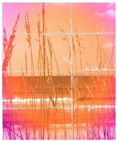 Orange and Pink Beach Art