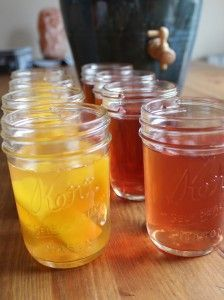 Making Kombucha Sweet and Fizzy (like what you get at the store) with the Ferment. Fruit second fermentation homemade kombucha How To Brew Kombucha, Kombucha Recipe, Kombucha Tea, Making Kombucha, Fermentation Recipes, Homebrew Recipes, Kombucha Fermentation, Probiotic Drinks, Homemade Smoothies