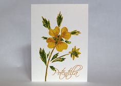 Hearts and Flowers  Potentilla  5 Color Letterpress by LionOfBali