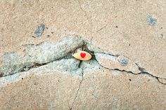 paint little rocks, put hearts on them, leave them in random places to spread cheer.