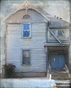 House For Sale Includes 3 Birds and a Cat by Distressed Jewell, via Flickr
