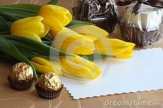 Valentines Day Tulips Gift Card - Stock Photo - Download From Over 41 Million High Quality Stock Photos, Images, Vectors. Sign up for FREE today. Image: 26755179