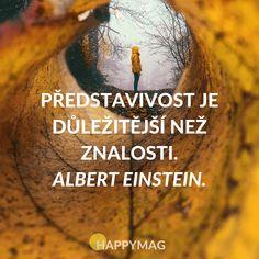 Představivost je důležitější než znalosti. Albert Einstein.