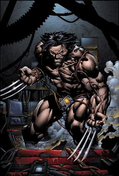 Wolverine by David Finch
