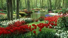 1920x1080 px garden picture free for desktop by Jayla Bush