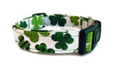 Dog Collar - St. Patrick's Day Shamrocks