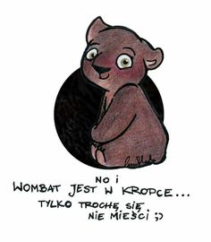 Wombat, The Incredibles, Positivity, Relationship, Bear, This Or That Questions, Humor, Comics, Wallpaper