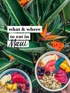 What and where to eat in Maui Hawaii including our favorite spots for tropical breakfast vegetarian sandwiches and killer cocktails! Maui Hawaii, Hawaii Honeymoon, Kauai, Hawaii Life, Lahaina Maui, Hawaii Travel Guide, Maui Travel, Croatia Travel, Italy Travel