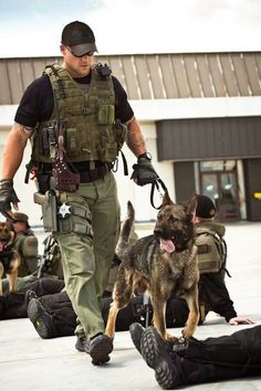 How to Stop Your German Shepherd Dog Barking Military Working Dogs, Military Dogs, Police Dogs, Game Mode, War Dogs, German Shepherd Dogs, German Shepherds, Shepherd Puppies, Men In Uniform