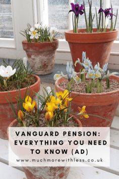 All the info on the low cost super simple Vanguard Sipp, including fees, drawdown and costs compared to other pensions. Live On Less, Super Simple, Money Saving Tips, Everything, Investing, Plants, Plant, Saving Tips, Planets