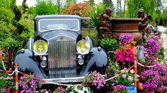Chelles (77) -17ème expomobile Pépinières Laurent Laplace- 1er Mai 2015 - Rolls Royce