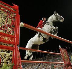 Anyone else love Jos Lansink's Cumano?? Phenominal horse!!