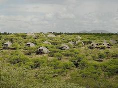 Condé Nast Traveler readers rate the top resorts and safari camps in South Africa, Botswana, Tanzania, Zimbabwe, Kenya, and Rwanda  Tanzania  जानकारी के लिए साइट पर पहुंचें   https://storelatina.com/tanzania/travelling  #तंजानिया #Танзания #Танзанія #viagem  Tanzania  Access Our Site Much More Information   https://storelatina.com/tanzania/travelling
