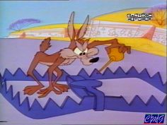 Road Runner and Wile E. Coyote Cartoon