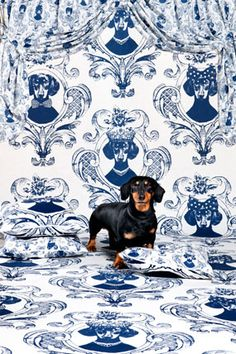 Tillsammans dog curtain ~ Designed by Mairo ~ How crazy fun is this wall paper?  It's something that I have to pin even if I wouldn't want it on my walls ... I must confess I would love a panel of the male & female on one of my inspiration walls!  FuN!