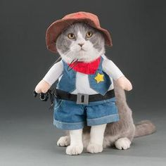 Do you want your own Cowboy? Well now you can with this adorable costume. Perfect for Cats 🐱 or Dogs 🐶, for Halloween 🎃 or just for fun. This is easy to put on and comfortable for your pet to wear which means you will be able to get better photos to share with your friends on social media. We have the best quality pet costumes so rest assured you won't be disappointed with your purchase. #halloween #petcostume #dogcostume #catcostume #petsupplies #funnypets Cute Cat Costumes, Funny Cats, Funny Animals, Dog Halloween, Cat Supplies, Cat Life, Your Pet, Dinosaur Stuffed Animal, Kittens