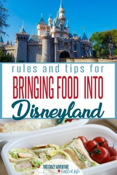 Great Disneyland tips for taking food into Disney on your vacation. What are the… Great Disneyland tips for taking food into Disney on your vacation. What are the best snacks and foods to take in and what is banned? Disneyland Paris, Disneyland Souvenirs, Disneyland Tickets, Disneyland Food, Disneyland Vacation, Disney Vacation Planning, Disney Vacations, Disneyland Birthday, Family Vacations