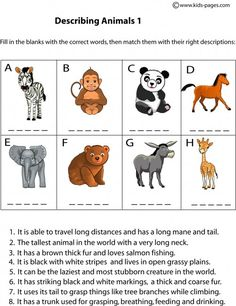 ... more children s worksheets for kids web site esl animals animals spl