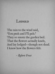 Oh Robert Frost, you speak to my soul. .lrg.