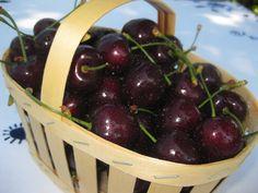 Fat black Basel cherries