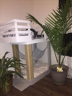 Pets Care - Bobs kitty condo/ cat condo/ catio/ cat apartment/ catdominium/ cat tree/ cat feeding station/ scratching post/ cat bed/ kitty hammock / kitty corner The way cats and dogs eat is related to their animal behavior and their different domesticati Pet Furniture, Apartment Furniture, Furniture Ideas, Furniture Market, Furniture Removal, Apartment Ideas, Cat Feeding Station, Diy Cat Tower, Diy Hammock