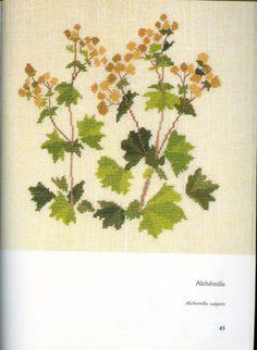 (2) Gallery.ru / Фото #19 - Arbustos florais DMC - NikaSu