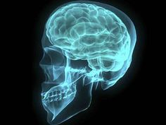 Scientific proof - your brain feels pain when you don't buy something! Save Money With Brain Power: How to Trick Your Brain When Shopping Tumor Cerebral, Brain Tumor, Brain Injury, Head Injury, Pineal Gland, Borderline Personality Disorder, Brain Training, Multiple Sclerosis, Ted Talks