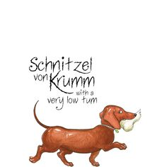 Hairy Maclary's friend - Schnitzel von Krumm with a very low tum