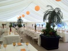 Out of Africa Party - white tent