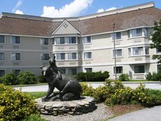 The Black Bear Inn Conference Center & Suites is near the University of Maine. http://www.blackbearinnorono.com