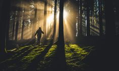 CleanTech Region Impact Group supports climate solving companies, individuals, organisations with financing, network and action. Highly Sensitive Person, Sensitive People, Lose 5 Pounds, Losing 10 Pounds, Forest Adventure, Forest Bathing, Forest Pictures, Key To Happiness, Spirituality