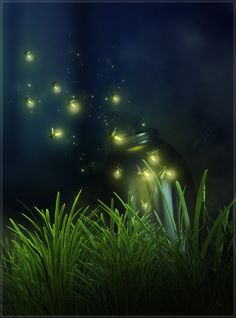 Have you ever caught lightning bugs, a frog, cricket, or any other creature? How long did you keep them? What was your favorite part about catching these creatures? Painting Digital, Lighting Bugs, Summer Nights, Night Skies, Beautiful World, Beautiful Pictures, Scenery, Illustration Art, Creatures