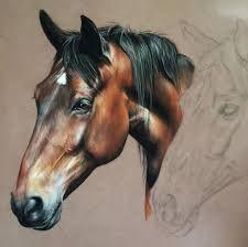 Resultado de imagen para caballo cabezas