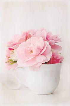 Pink flowers, teacup ✿⊱╮