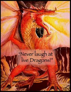 Bilbo you fool! - Bilbo to himself, The Hobbit, Inside Information Tolkien Books, J. R. R. Tolkien, Tolkien Quotes, Smaug Quotes, Dragon Quotes, History Of Middle Earth, Earth Quotes, Beautiful Dragon, Dragon Pictures