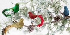 Tree Magic | chapters.indigo.ca Beautiful Christmas decoration for a #MagicalHoliday #indigo