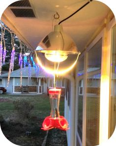 No more frozen hummingbird food It's been a learning process for us when it comes to accommodating our hummingbirds who stay in our area year round. They're Anna's hummingbirds, and such a joy to watch. We even have one that...