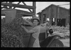 Wife of pea farmer at vinery near Sun Prairie, Wisconsin, Photographer Russell Lee Created June 1937 Location Sun Prairie, Dane, Wisconsin