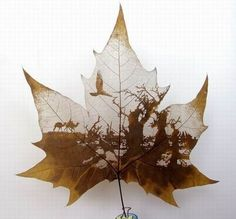 Leaf carving art is one of the newest art forms in recent years. It's inspiration comes from the beauty of nature, something we can all appreciate. Art Et Nature, Leaf Crafts, Montage Photo, Inspiration Art, Painted Leaves, Leaf Art, Oeuvre D'art, Cool Artwork, Art Forms