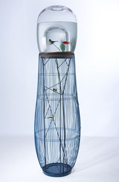 """""""Duplex"""" combination birdcage and aquarium by Constance Guisset. The top of the cage juts up into a """"bubble"""" in the aquarium above."""
