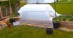 How to Cheaply Build a Greenhouse