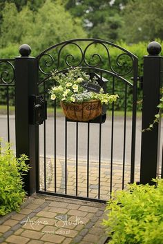 Lietam v loptách ... Prednášate, neučujete? Front Gardens, Outdoor Gardens, Back Garden Landscaping, Front Gate Design, Rose Trees, Garden Deco, Garden Design, Garden Cottage, Iron Gates