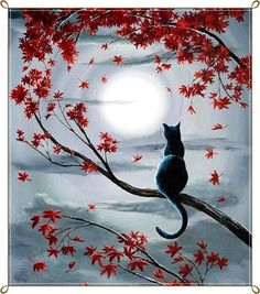 Zen Painting - Black Cat In Silvery Moonlight by Laura Iverson Black Cat Painting, Zen Painting, Beginner Painting, Sillouette Painting, Black Cat Drawing, Frog Drawing, Butterfly Painting, Autumn Painting, Doodle Art