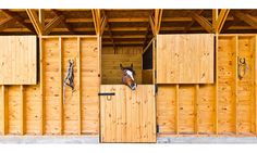 Pesebreras Pilay | d+vA | duval+vives architects. Maybe have the wood stop half way so the ponies can see out?