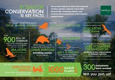 Conservation & Environment Projects in Galapagos Islands, Ecuador ...
