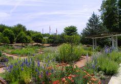 A view of the Herb & Physic Garden at the State Botanical Garden of Georgia.