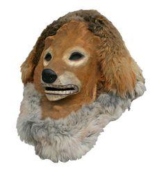 lion 34