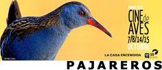 """Voy de """"pajareo"""" al cine y gratis!  vienes? Hoy a las 19:00 @LaCasaEncendida @SEO_BirdLife   http://www.nosolocine.net/hoy-comienza-en-la-casa-encendida-de-madrid-el-ciclo-de-documentales-pajareros/… """""""